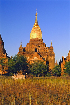 Gold gilded spire on ancient temple, old Bagan (Pagan), Myanmar (Burma)