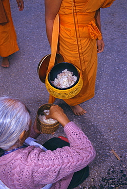 Novice monk receiving alms in the early morning, Luang Prabang, Laos, Indochina, Asia