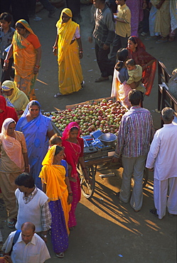 Elevated view of street scene, Pushkar, Rajasthan State, India, Asia