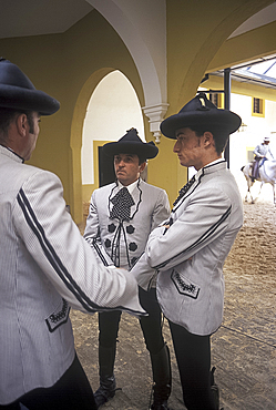 Royal Andalusian School of Equestrian Art, Jerez, Andalucia (Andalusia), Spain, Europe