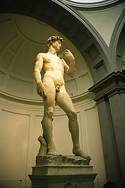 Michelangelo's statue of David, Florence, Tuscany, Italy, Europe
