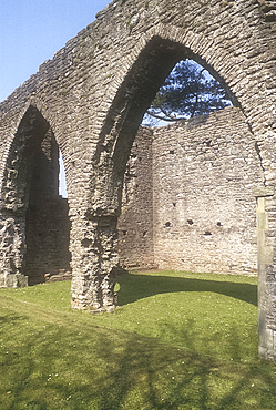 Armagh Friary, Co Armagh, Northern Ireland, UK *** Local Caption ***