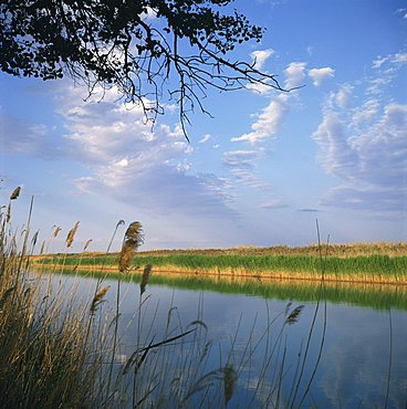 The Kara Kum canal brings water from the River Amu Darya (Oxus), to irrigate cotton fields, Turkmenia, Central Asia, Asia