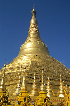 Workers on bamboo scaffolding applying fresh gold leaf to the Shwedagon Pagoda, Yangon (Rangoon), Myanmar (Burma), Asia