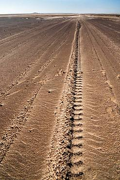Tyre tracks delineate a seemingly endless straight road in Namib Desert near the infamous Skeleton Coast, Namibia, Africa
