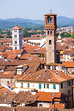 Roofscape as seen from Torre Guinigi, with the Torre delle Ore on the right, Lucca, Tuscany, Italy, Europe