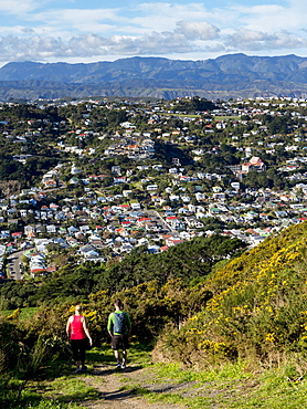 Suburbs and Rimutaka Ranges from Kingston with couple on walking track, Wellington, North Island, New Zealand, Pacific