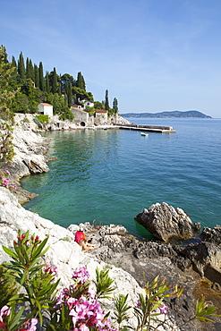 Rocky coast and harbour, Trsteno, Dubrovnik, Croatia, Europe