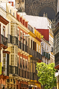 Typical Andalusian street and coloured houses, with cathedral in the background, Seville, Andalusia, Spain, Europe