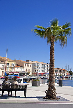 Women on a bench near a palm tree, on the quay of Meze harbor, Herault, Languedoc Roussillon region, France, Europe