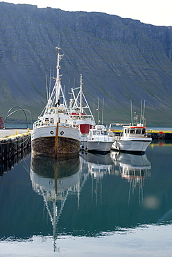 Fishing boats in the harbour at the village of Bildudalur, West Fjords, Iceland, Polar Regions