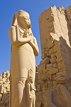 Giant statue of the great pharaoh Rameses II with the small statue of his daughter Bent'anta between his legs in the forecourt behind the first Pylon of the great Temple at Karnak near Luxor, Thebes, UNESCO World Heritage Site, Egypt, North Africa, Africa
