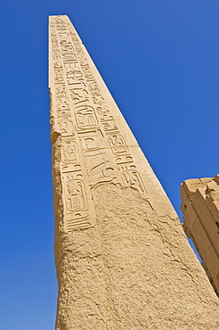 Giant granite obelisk decorated with hieroglyphics at the great Temple at Karnak near Luxor, Thebes, UNESCO World Heritage Site, Egypt, North Africa, Africa