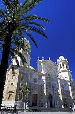 Spain, Andaloucia, Cadiz, The Cathedral & Palme At Fore
