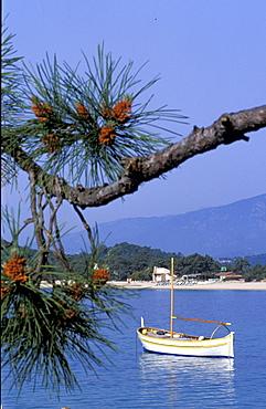 France, Corsica Island, Corse-Du-Sud, Porto-Vecchio, Cala Rossa Hotel Shore Line