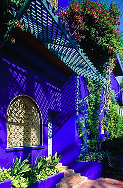 Morocco, South, Marrakech, The Blue Painted Majorelle House Now A Museum Open To The Public