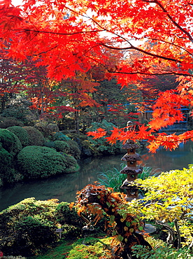 Rinno-Ji Park in the autumn, Nikko, Japan, Asia