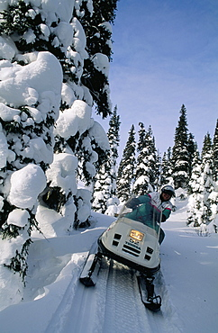 Snowmobile, Sunset Country, Ontario, Canada, North America