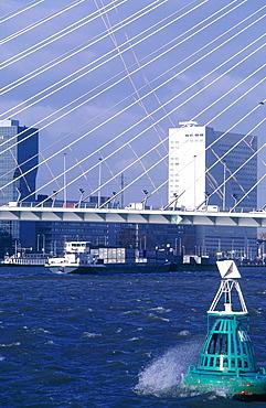 Netherlands, Rotterdam, The New Erasmus Bridge