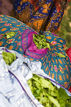 Bags of Tea Leaves, Kerala, India