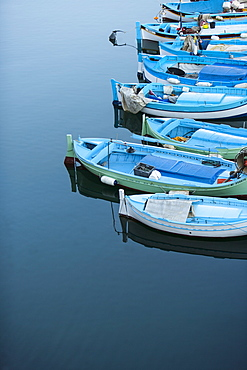 Fishing Boats, St. Tropez, Var, Cote d'Azur, French Riviera, Provence, France, Europe