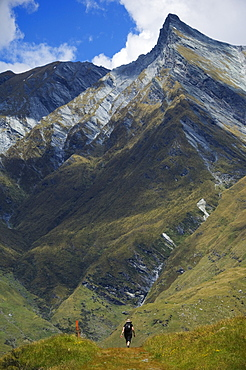 Hikers on the Rob Roy Glacier Hiking Track, Mount Aspiring National Park, South Island, New Zealand, Pacific
