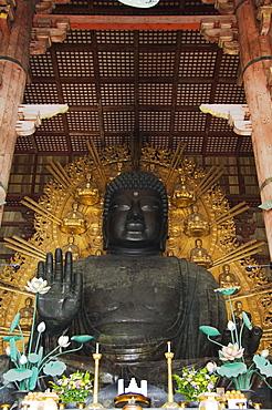 Todaiji Big Buddha Temple constructed in the 8th century, UNESCO World Heritage Site, Nara City, Nara Prefecture, Honshu Island, Japan, Asia