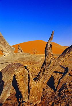 Sand dunes, Sesriem, Sossusvlei National Park, Namibia - 733-85
