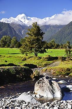 Mount Tasman and Cook Flat, Westland Tai Poutini National Park, UNESCO World Heritage Site, West Coast, South Island, New Zealand, Pacific