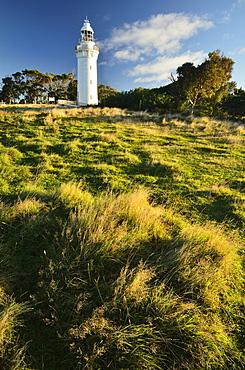 Lighthouse, Table Cape, Tasmania, Australia, Pacific