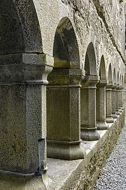 Cloister, Ross Errilly Franciscan Friary, near Headford, County Galway, Connacht, Republic of Ireland, Europe