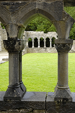 Cong Abbey, County Mayo, Connacht, Republic of Ireland, Europe