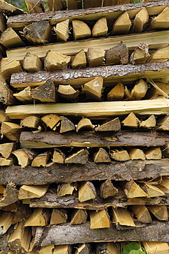 Stack of firewood typical of the Alps, Austria, Europe