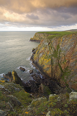 Mull of Galloway, Scotland's most southerly point, Rhins of Galloway, Dumfries and Galloway, Scotland, United Kingdom, Europe