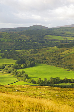 Fleet Valley National Scenic Area, from the Doon of Culreoch, Dumfries and Galloway, Scotland, United Kingdom, Europe