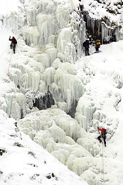 Ice climbing on Grey Mare's Tail Waterfall, Moffat Hills, Moffat Dale, Dumfries and Galloway, Scotland, United Kingdom, Europe