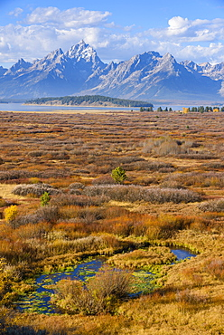 Willow Flats and Teton Range, Grand Tetons National Park, Wyoming, United States of America, North America