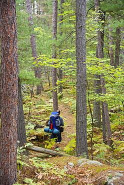 Hiker on La Cloche Silhouette Trail in Killarney Provincial Park, Ontario, Canada, North America