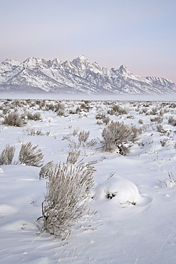 Teton Range at Dawn in winter, Grand Teton National Park, Wyoming, United States of America, North America