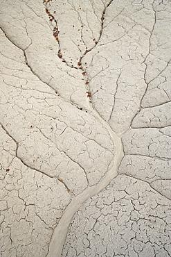 Erosion patterns in a small drainage, Bisti Wilderness, New Mexico, United States of America, North America