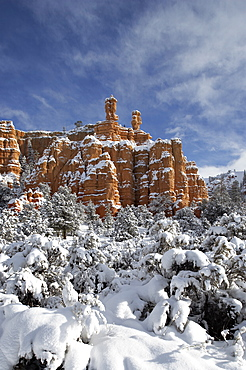 Snow-covered red rock formations, Dixie National Forest, Utah, United States of America, North America