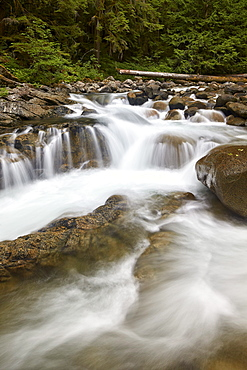 Cascades on Deception Creek, Mount Baker-Snoqualmie National Forest, Washington, United States of America, North America