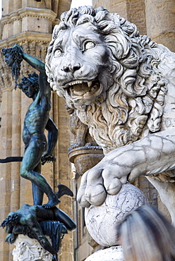 The Marzocco Lion and Perseus statue, Piazza della Signoria, Florence, UNESCO World Heritage Site, Tuscany, Italy, Europe