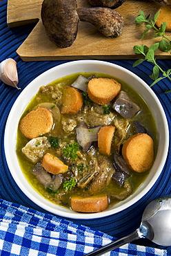 Mushroom soup (Boletus edulis), Italy, Europe