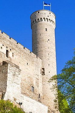 The Pikk Hermann Tower, part of the Toompea Castle, UNESCO World Heritage Site, Tallinn, Estonia, Baltic States, Europe