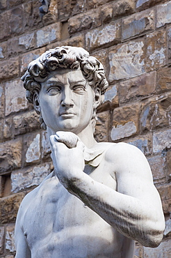 The David, by Michelangelo, Palazzo Vecchio, Piazza Signoria, Florence (Firenze), UNESCO World Heritage Site, Tuscany, Italy, Europe