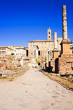 Columns tetrarchiche (honorary columns), Roman Forum, UNESCO World Heritage Site, Rome, Lazio, Italy, Europe