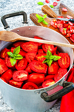 preparing the tomato sauce with tomatoes, basil, for winter time