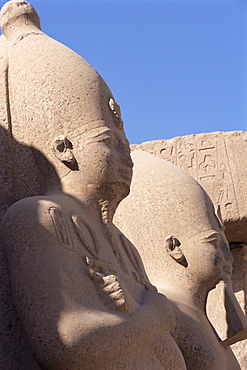 Statues of pharaohs in the Temple of Amun (Amon), Temple of Karnak, Thebes, UNESCO World Heritage Site, Egypt, North Africa, Africa