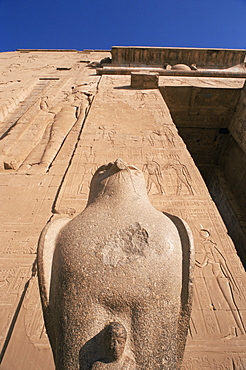 Statue of Horus at entrance to the Horus Temple, Edfu, Egypt, North Africa, Africa